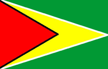 Guyana - national flag