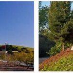 California State University, East Bay Reviews (1)