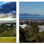 California State University, East Bay Reviews (9)